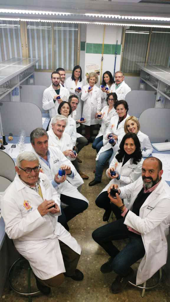 The UGR researchers participating in the VIRTUOUS project