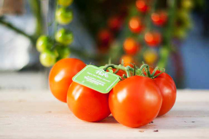 Pure Harvest Smart Farms currently supplies tomatoes grown in an enclosed, environment-controlled farm to supermarkets, hotels and restaurants in the UAE