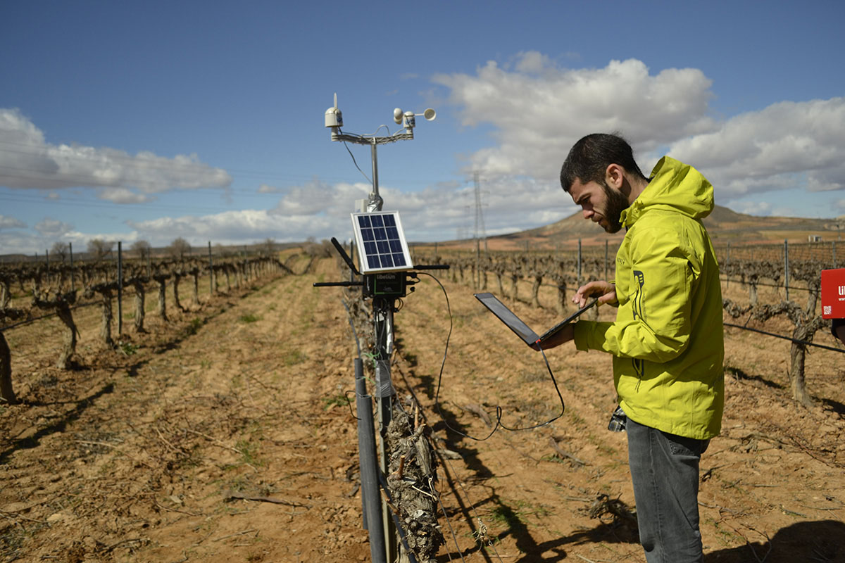 """""""We have applied technology to vineyards to increase the productivity of the crop, and to reduce the amount use the amount of water used to irrigate,"""" said Asin Perez"""