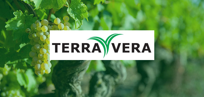 Reducing crop losses with Terra Vera's sustainable pesticide alternative