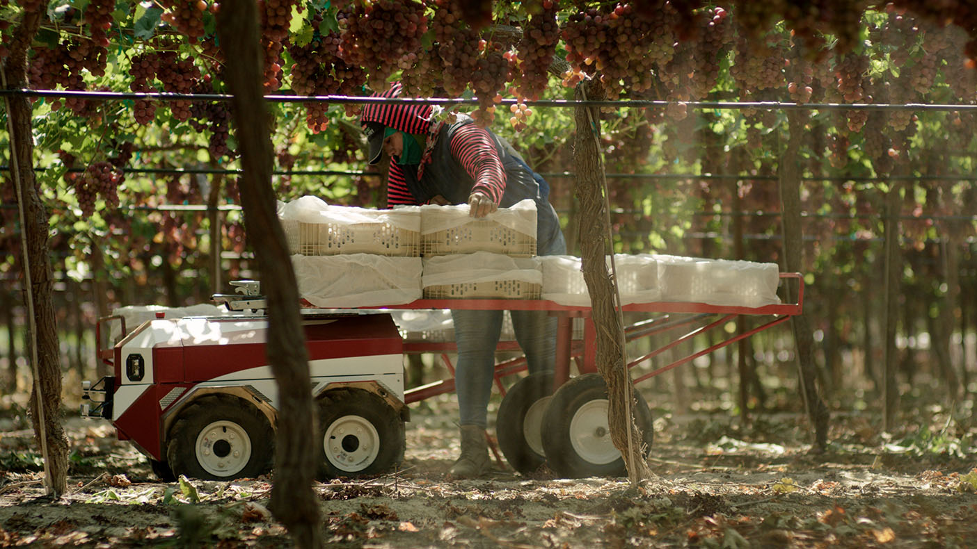 Future Acres says Carry improves those conditions by working alongside farmworkers as they harvest to lessen the load.