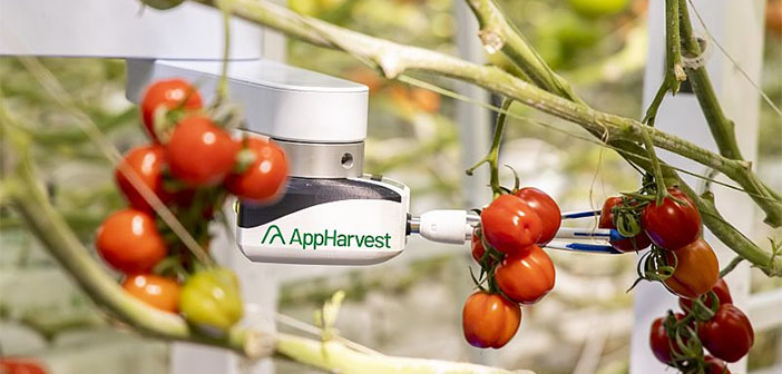 AppHarvest acquires agricultural robotics and AI specialist Root AI to boost tomato production
