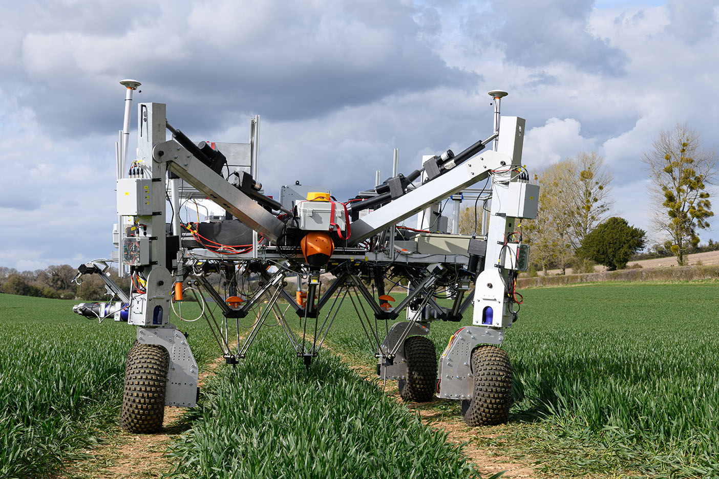 The 'Dick' robot prototype deploys RootWave non-chemical weeding technology mounted on an igus delta robotic arm to zap the weeds.